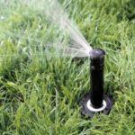 Zalety ogrodowych systemów nawadniających
